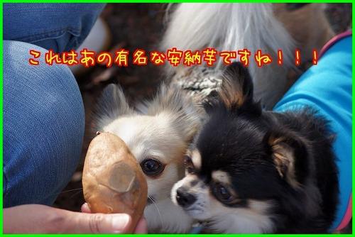 談山神社0765