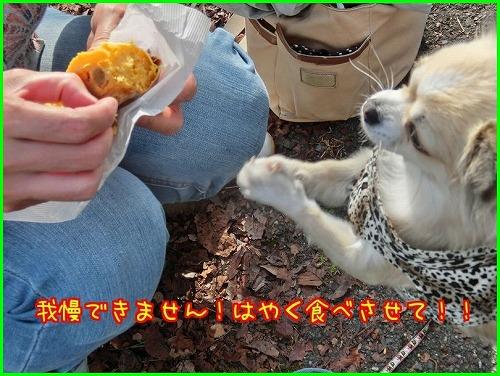 談山神社2126