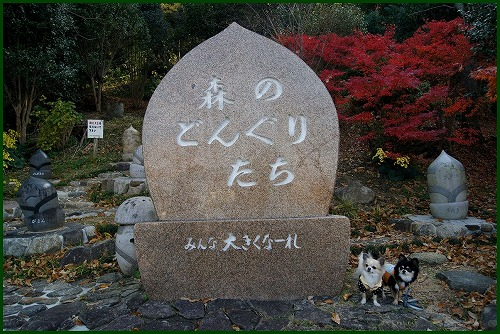 枚岡公園0878