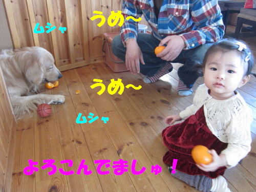 IMG_7309.jpg