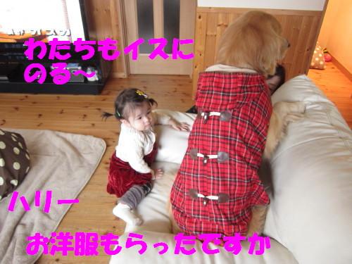 IMG_7359.jpg