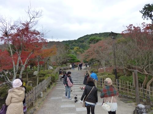 4丸山公園 (5)_resized.jpg