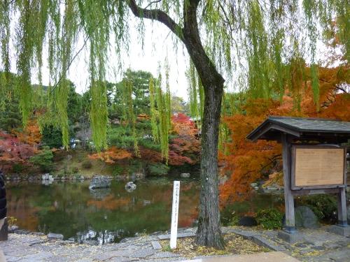 4丸山公園 (3)_resized.jpg