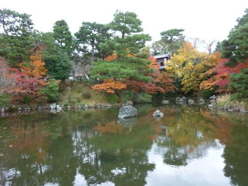 4丸山公園 (4)_resized.jpg