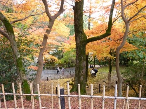 4丸山公園 (8)_resized.jpg