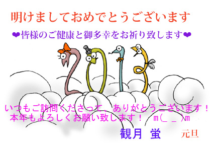 2013FC2年賀