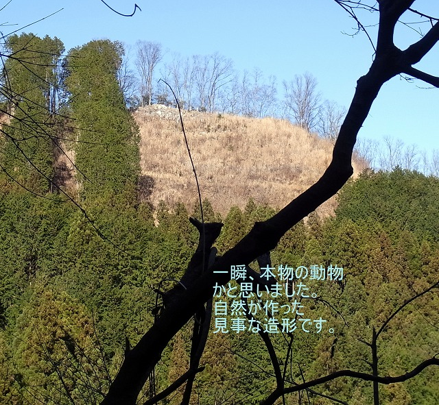 ☆R1046276