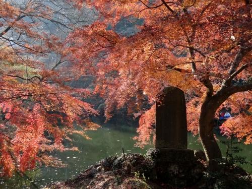1鎌北湖 (1200x900)