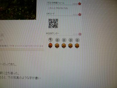 P1070566_convert_20121104203139.jpg