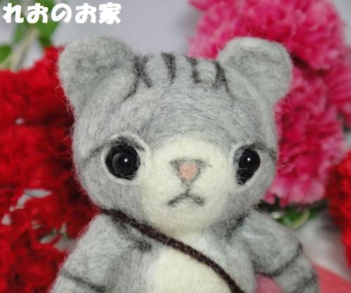 きじ猫ちゃん2