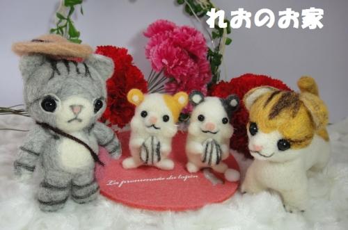 きじ猫ちゃん6