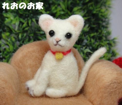 白猫ソファ4