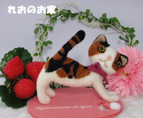 三毛猫のび1