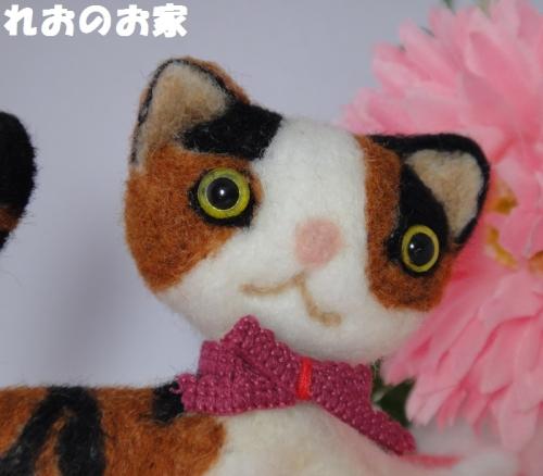 三毛猫のび4
