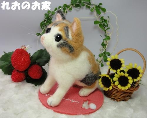三毛子猫2