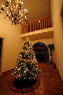 アラバマ生活雑記帳-クリスマスツリー