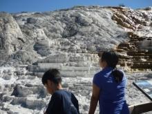 アラバマ生活雑記帳-Yellowstone 09