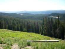 アラバマ生活雑記帳-Yellowstone 10