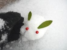 アラバマ生活雑記帳-雪うさぎ