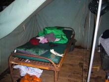 $アラバマ生活雑記帳-his tent