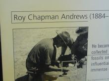 $アラバマ生活雑記帳-インディのモデル考古学者