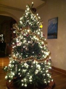 $アラバマ生活雑記帳-Christmas tree 2011
