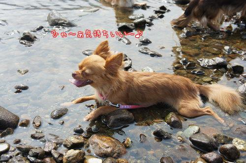 初川遊び1