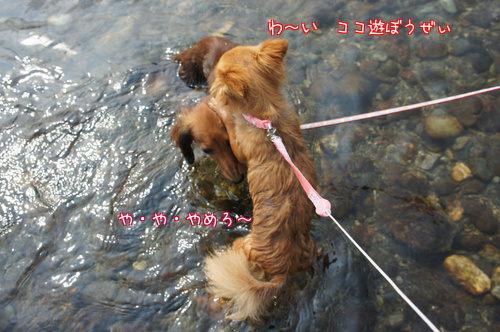 初川遊び2