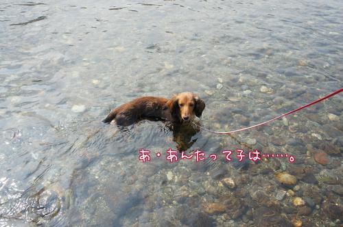 初川遊び3