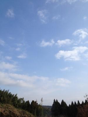 2013.12.30開墾10