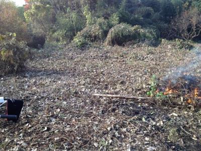 2013.12.31開墾