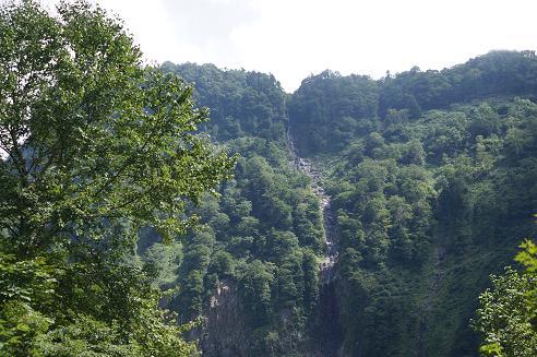 ももさくら 称名滝9月7日 002A