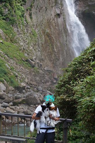 ももさくら 称名滝9月7日 007A