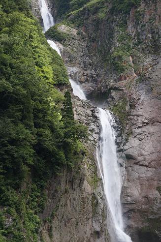 ももさくら 称名滝9月7日 008A