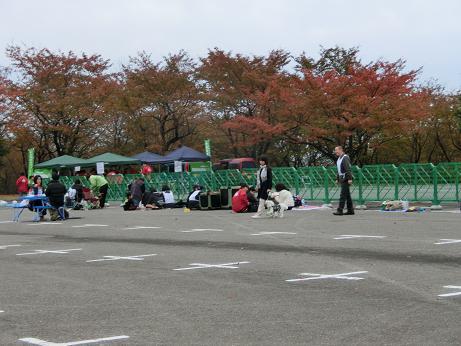 ももさくら 11月11日太閤山ランド 004A
