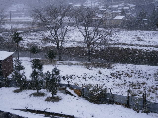 H25初雪