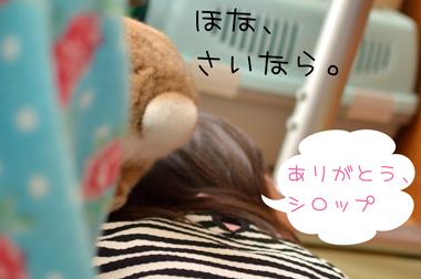 k_DSC0223.jpg