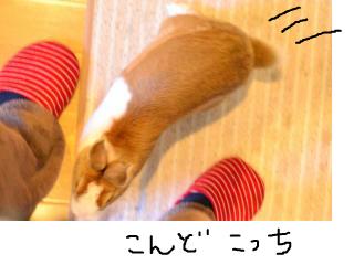 snap_monsan1122_201335155940.jpg