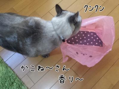 かわいい袋2