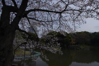 バックには東京ドームも見えます