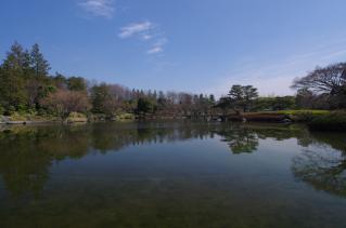 風のない日本庭園は最高です