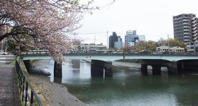 桜の広島市