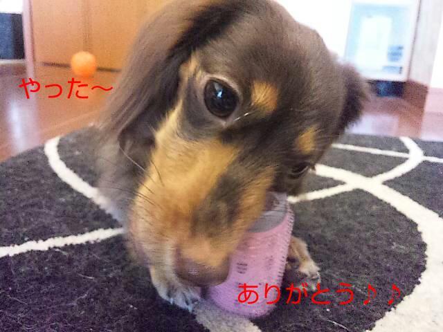 20120627_091637.jpg