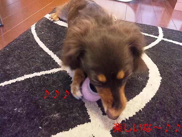 20120627_091912.jpg