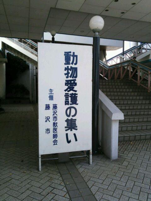 DSC_2617.jpg