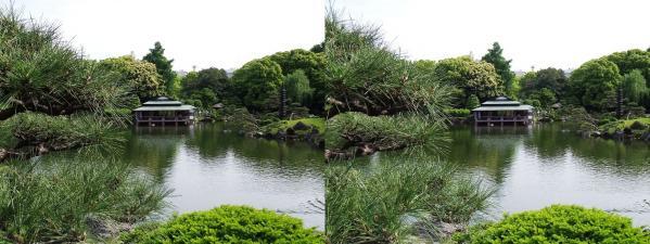 清澄庭園①(平行法)