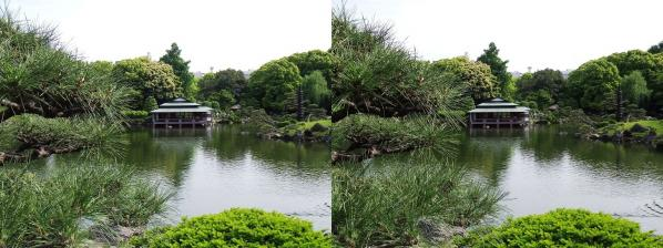 清澄庭園①(交差法)