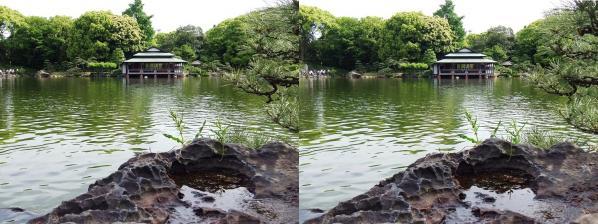 清澄庭園③(平行法)