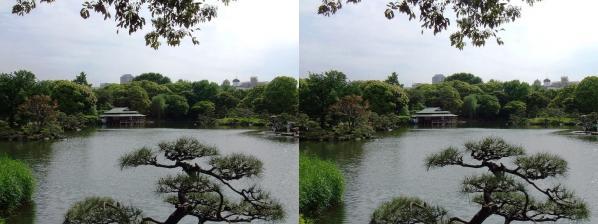清澄庭園⑥(平行法)