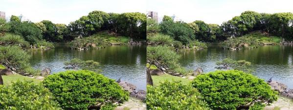 清澄庭園②(平行法)